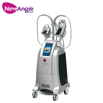 Fat Freeze Slimming Machine with CE Certificate