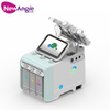 Professional Skin Care Oxygen Facial Machine for Beauty Salon H3