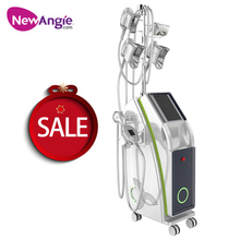 Professional 5 Handles Cryolipolysis Fat Freeze Slimming Machine ETG50-6S